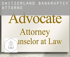 Switzerland  bankruptcy attorney