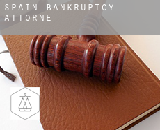 Spain  bankruptcy attorney