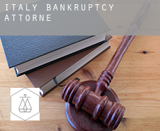 Italy  bankruptcy attorney